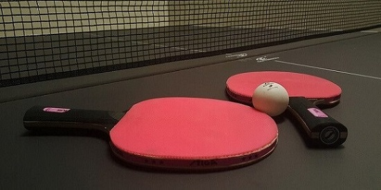 Top 10 Best Ping Pong Paddle For Beginners Review 2021